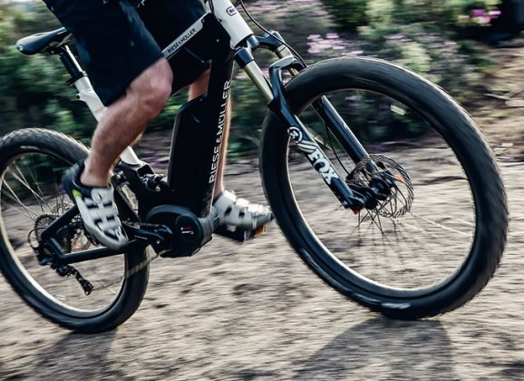 Test: Riese & Müller Delite Mountain Rohloff