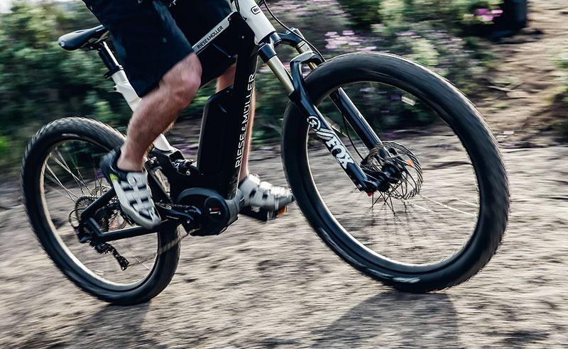 E-Bike Delite Mountain im Gelände
