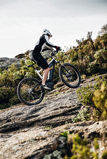 Delite Mountain E-Bike