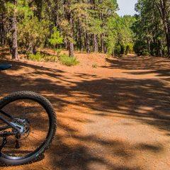 E-Bike vs. Fahrrad: Bessere Fitness, 3x weniger Schwitzen