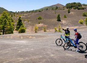 XXL E-Bikes 2020 – Eine Suche