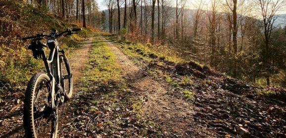 Fahrradtouren in Zeiten von Corona – Die Natur genießen